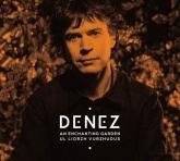 CD Remix DENEZ